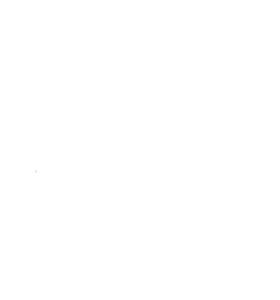 Dojo Watermark